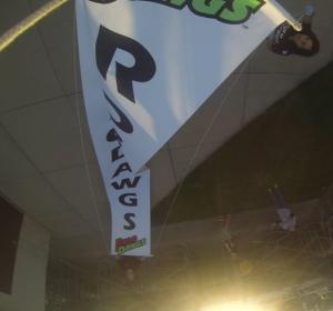 RoboDawg Homecoming Banner